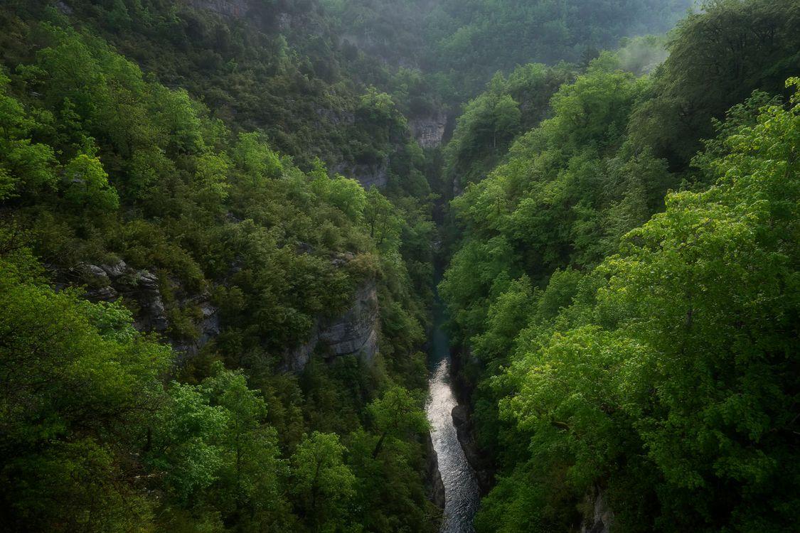 Фото бесплатно река, горы, деревья, природа, природа