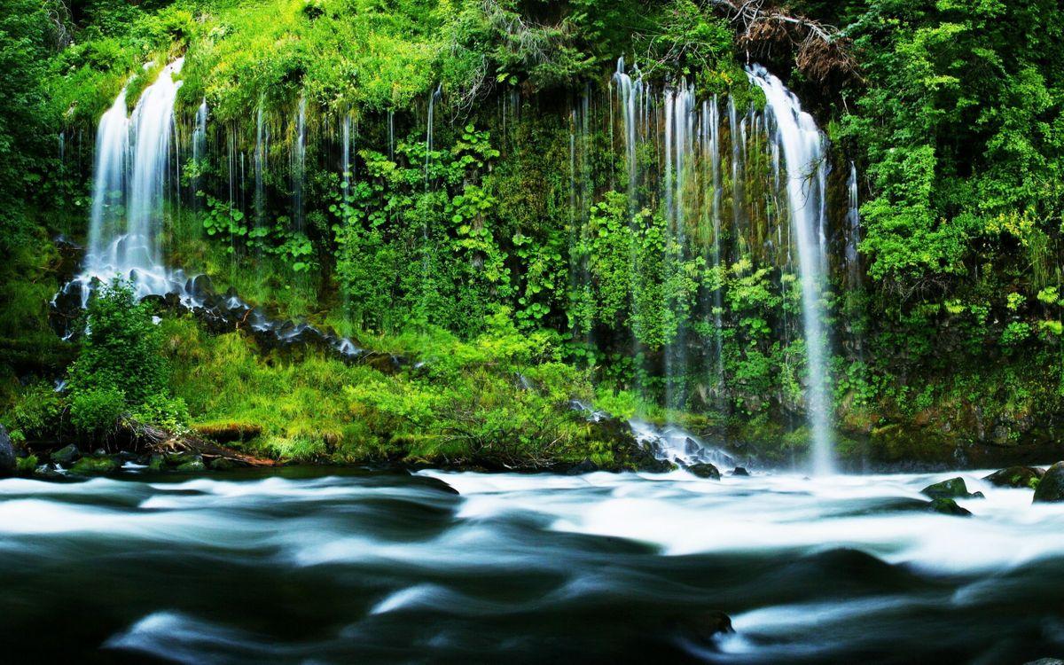 Фото бесплатно водопад, джунгли, река, деревья, лес, трава, мох, природа