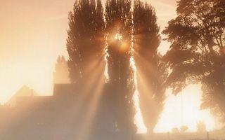 Фото бесплатно дом, деревья, восход