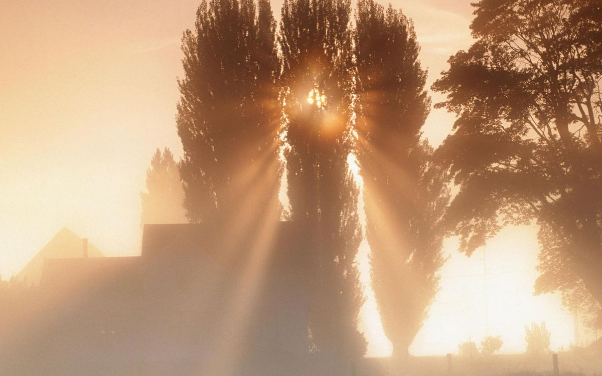 Photos for free house, trees, sunrise - to the desktop