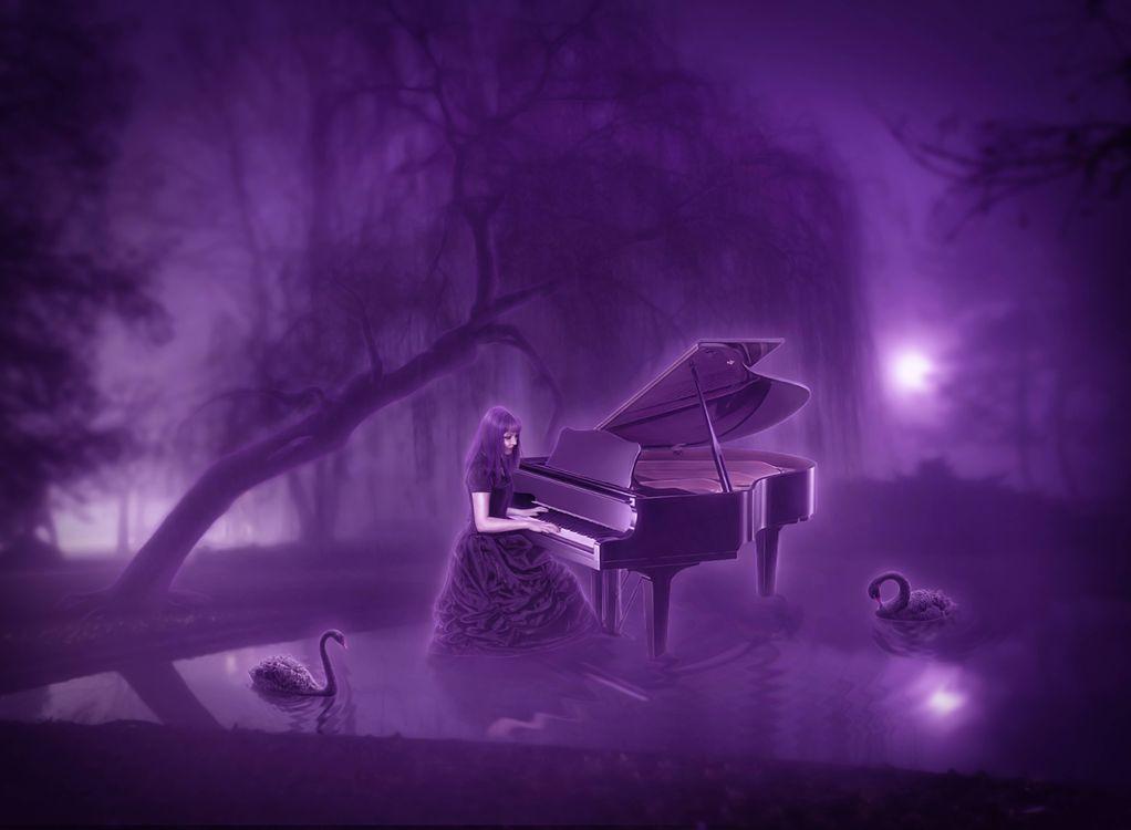 Картинка ночь, луна, пруд, рояль, девушка, лебеди на рабочий стол. Скачать фото обои рендеринг