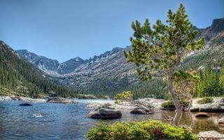 Бесплатные фото река,камни,деревья,горы,снег,небо