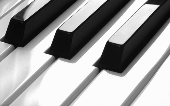 Заставки клавиши, черные, белые