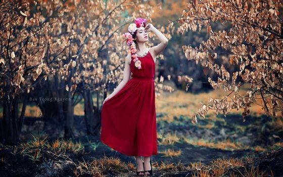 Бесплатные фото девушка,фотомодель,трава,деревья,поляна