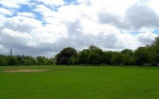 Бесплатные фото парк,трава,зеленая,газон,деревья,небо,облака