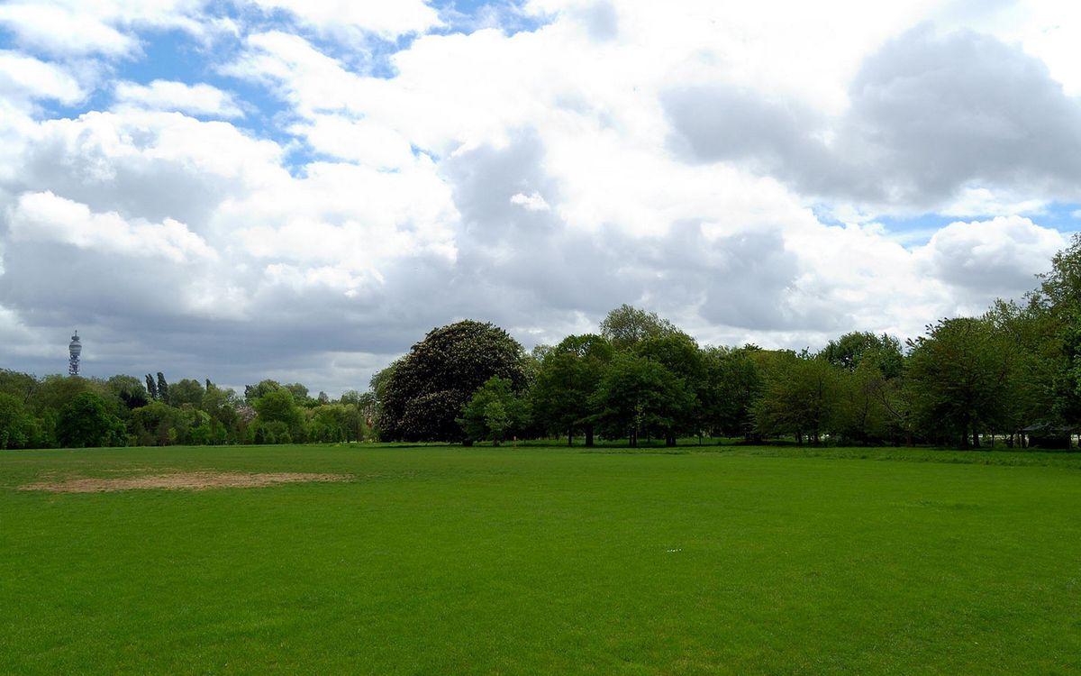 Фото бесплатно парк, трава, зеленая, газон, деревья, небо, облака, природа