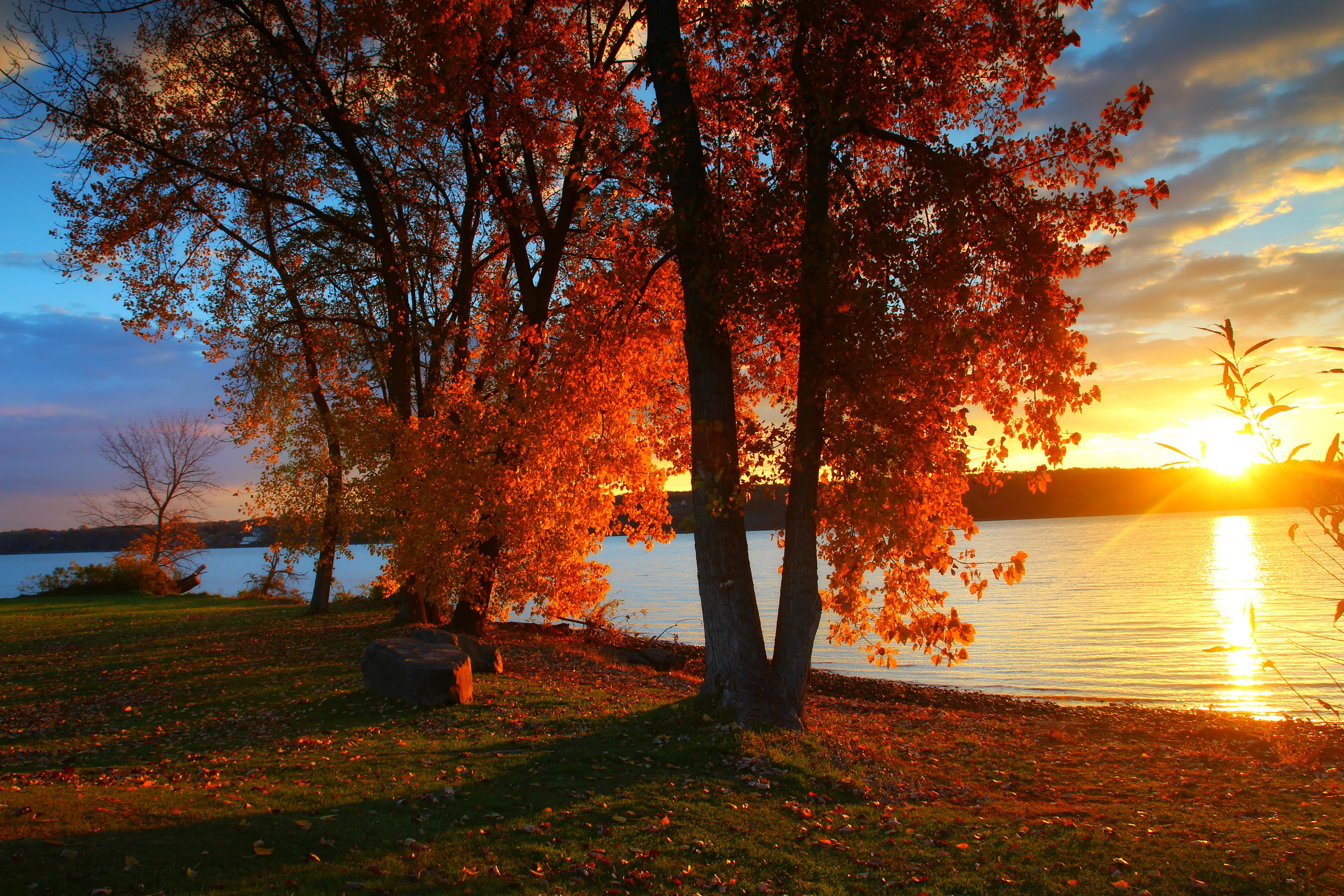 обои закат, река, берег, осень картинки фото