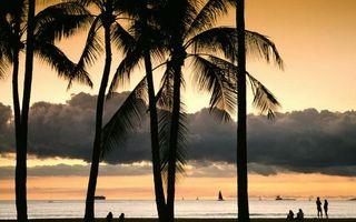 Бесплатные фото море,парусники,побережье,пляж,люди,пальмы,небо