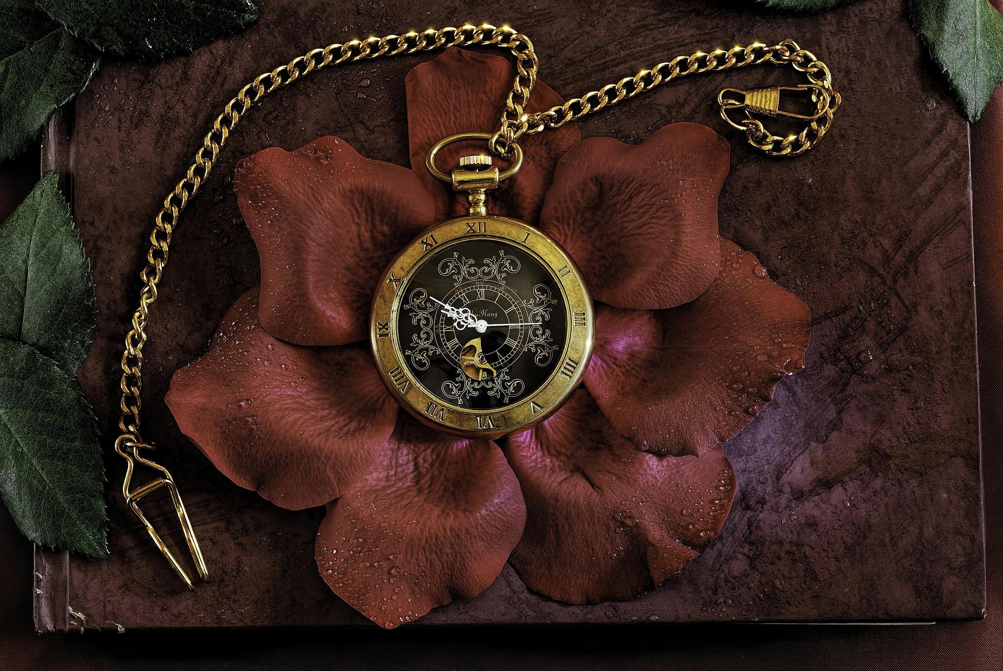 Обои часы, лепестки роз, обои, фотография