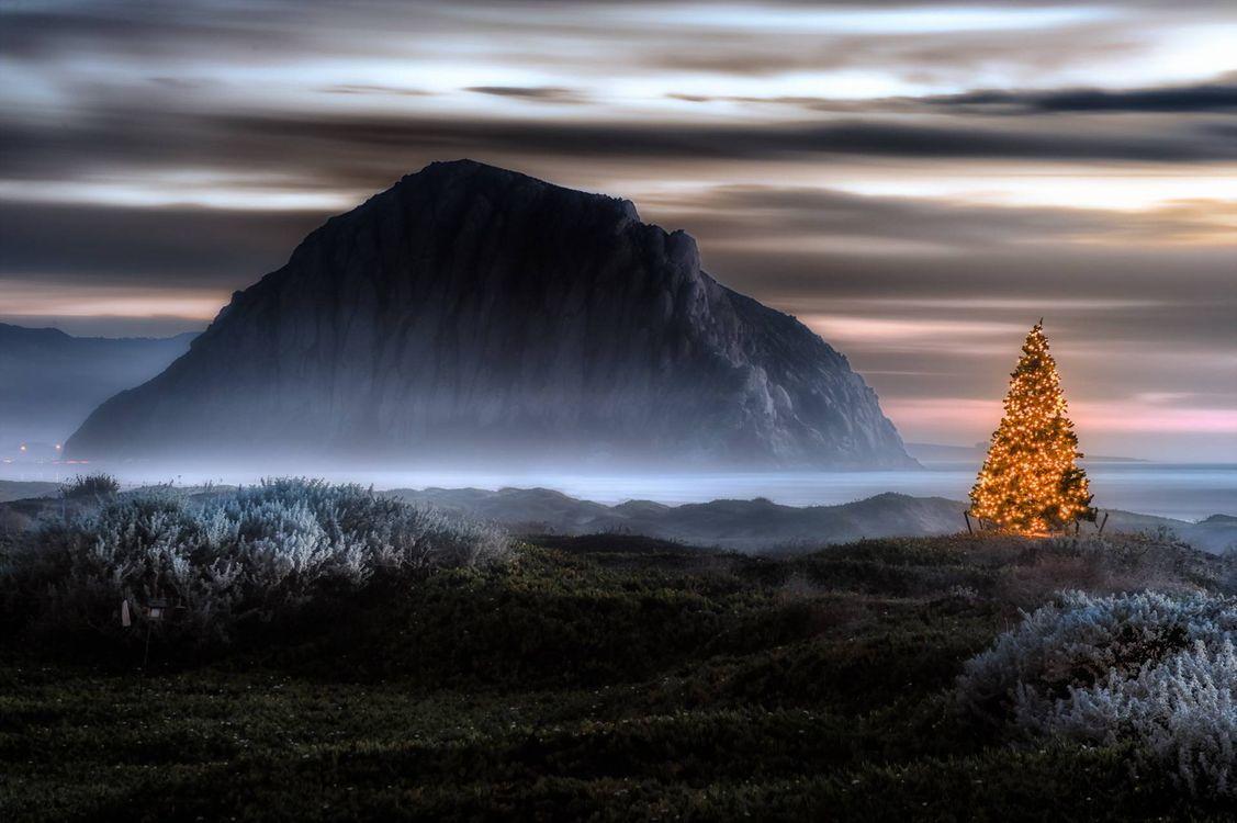 Фото бесплатно елка, гирлянды, природа, гора, море, берег, новый год