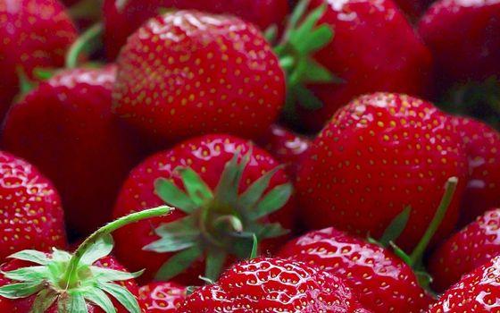 Бесплатные фото ягода,клубника,спелая,красная,хвостики,зеленые