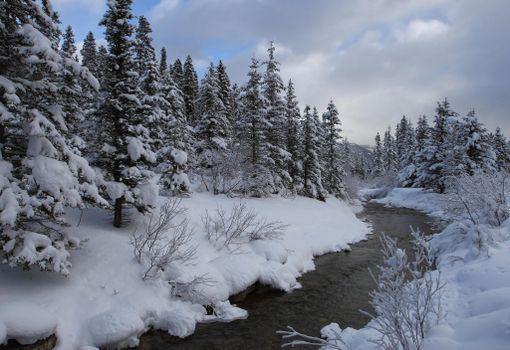 Banff National Park, Alberta, Канада, зима, река