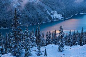 Бесплатные фото Peyto Lake,Banff National Park,зима,горы,озеро,деревья,пейзаж