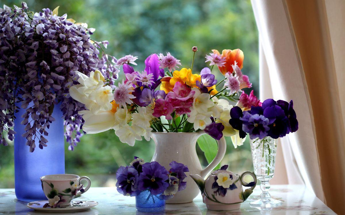 Фото бесплатно подоконник, вазы, цветы, разные, лепестки, цветные, чашка, чайничек, цветы
