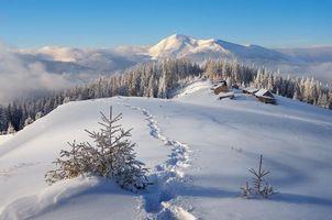 Бесплатные фото зима,горы,снег,сугробы,следы,домики,деревья