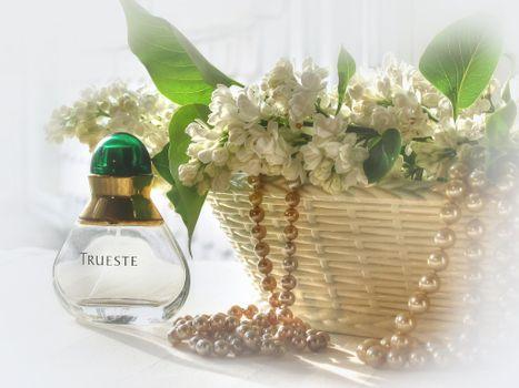 Фото бесплатно Цветочная композиция, цветы, сирень