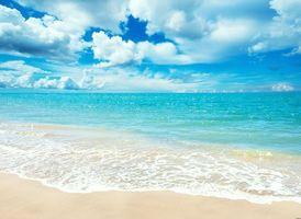Фото бесплатно песок, пляж, прозрачная вода