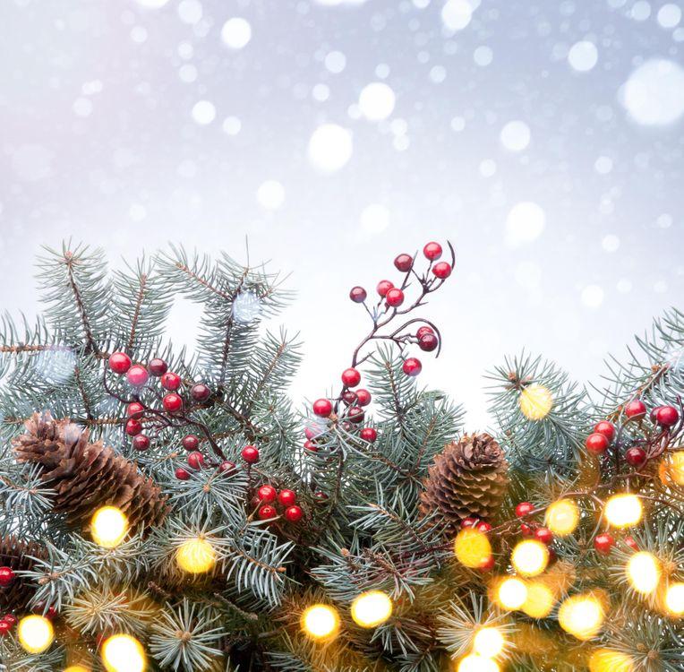 Фото бесплатно Рождество, дерево, снег, фон, дизайн, элементы, ёлка, ель, ветки, шишки, белый, Орнамент, снежинка, зима, синий, новый год