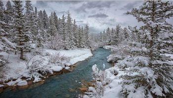 Фото бесплатно зима, река, деревья, пейзаж