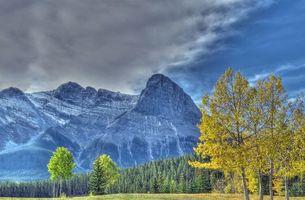 Бесплатные фото Canmore,Alberta,горы,осень,деревья,пейзаж