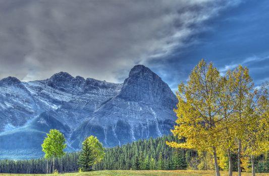 Canmore, Alberta, горы, осень, деревья