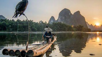 Бесплатные фото рыбак,Вьетнам,птица