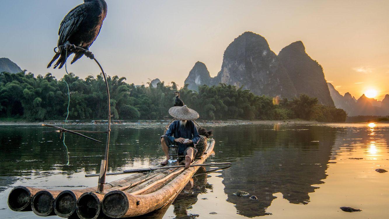 Фото бесплатно рыбак, Вьетнам, птица - на рабочий стол