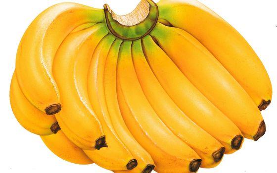 Фото бесплатно фрукты, бананы, связка