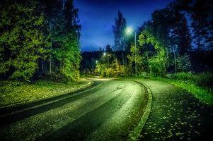 Бесплатные фото ночь,дорога,осень,фонари,лес,деревья,пейзаж