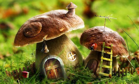 Photo free fairy-tale houses, fabulous mushrooms, white fungus