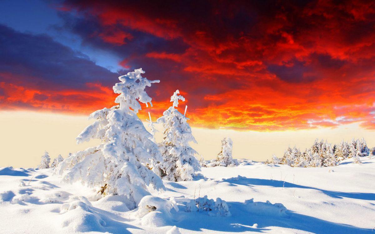Фото бесплатно деревья, облака, красный - на рабочий стол