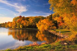 Фото бесплатно деревья, рыбак, лес