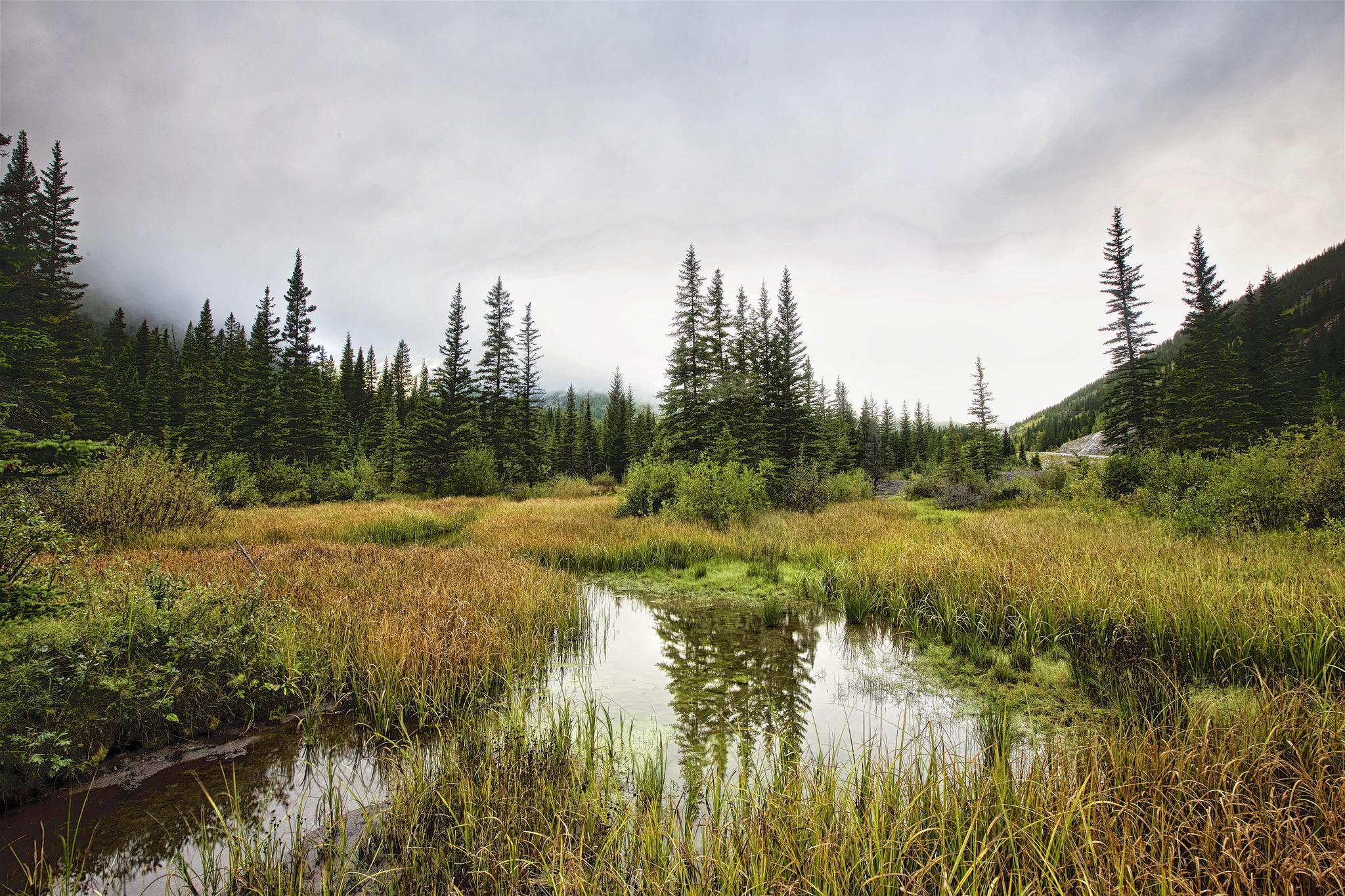 обои Kananaskis Country, Alberta, Canada, водоём картинки фото