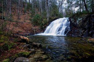 Заставки лес,деревья,река,водопад,природа