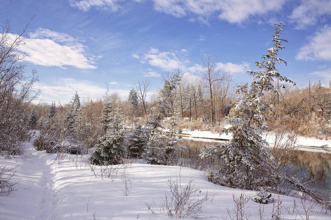 Фото бесплатно зима, река, снег, деревья, пейзаж - на рабочий стол