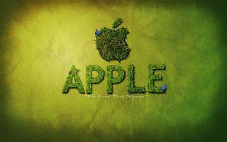 Обои эпл, логотип, эмблема, яблоко, надписи, трава, бабочки