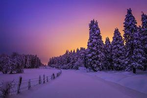 Бесплатные фото Otzarreta, Природный парк Горбеа, Испания, Снег, зима, Провинция Бискайя, Страна Басков