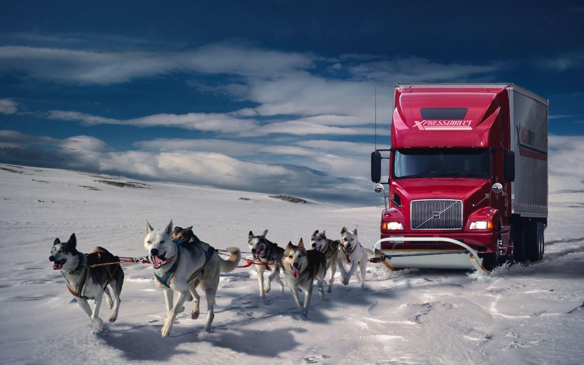 Обои снег, сугробы, грузовик, фура