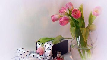 Бесплатные фото тюльпаны, букет, ваза, коробка, лента, духи