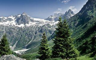 Бесплатные фото горы,снег,лес,небо