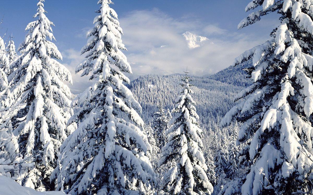 Фото бесплатно зима, горы, деревья, снег, небо, облака - на рабочий стол