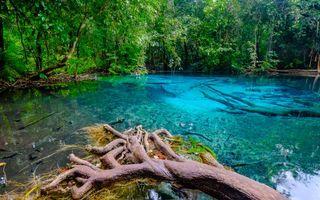 Фото бесплатно зумрудный бассейн, Изумрудное озеро и горячин источники, Тайланд