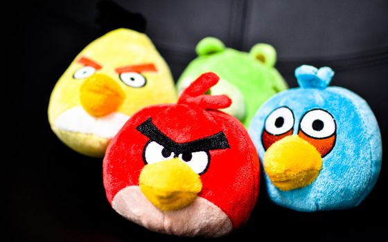 Photo free soft toys, angry birds, evil birds