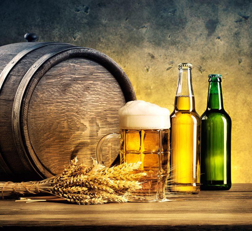 Фото бесплатно уши, пей, пиво - на рабочий стол