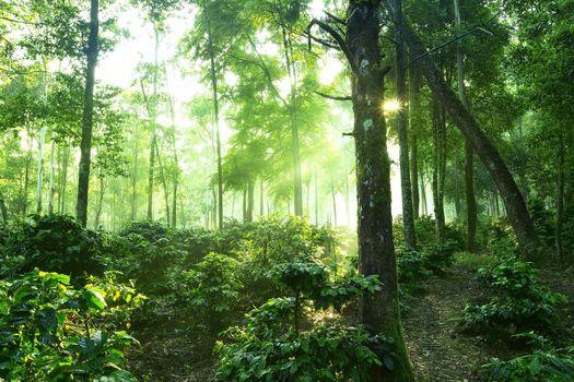 Фото бесплатно Келимуту Т, Восточная Нуса-Тенгара, пейзаж