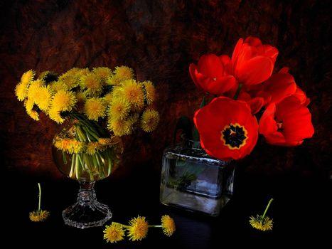 Фото бесплатно одуванчики, тюльпаны, цветы