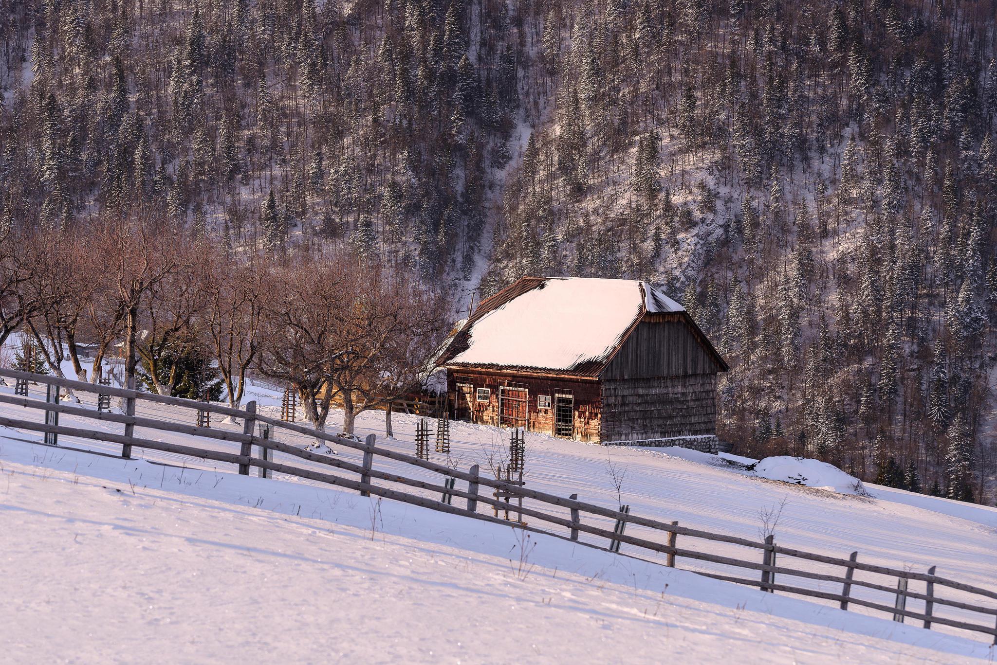 Обои Magura, Brasov, РУМЫНИЯ, зима