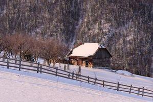 Бесплатные фото Magura,Brasov,РУМЫНИЯ,зима,горы,домик,деревья