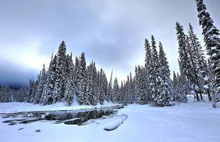 Бесплатные фото Изумрудное озеро,Национальный парк Йохо,Британская Колумбия,Канада,зима,пейзаж