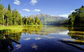 Фото бесплатно река, коряги, отражение